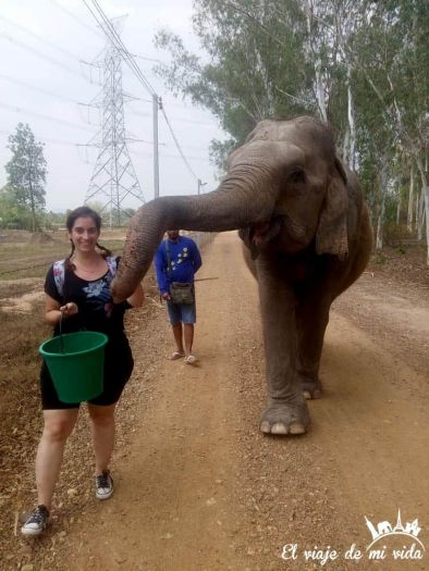 Wildlife Friends Foundation Thailand